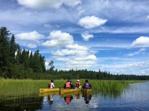 Under blue sky, exploring wetlands along the beautiful shoreline of Quetico on an amazing day