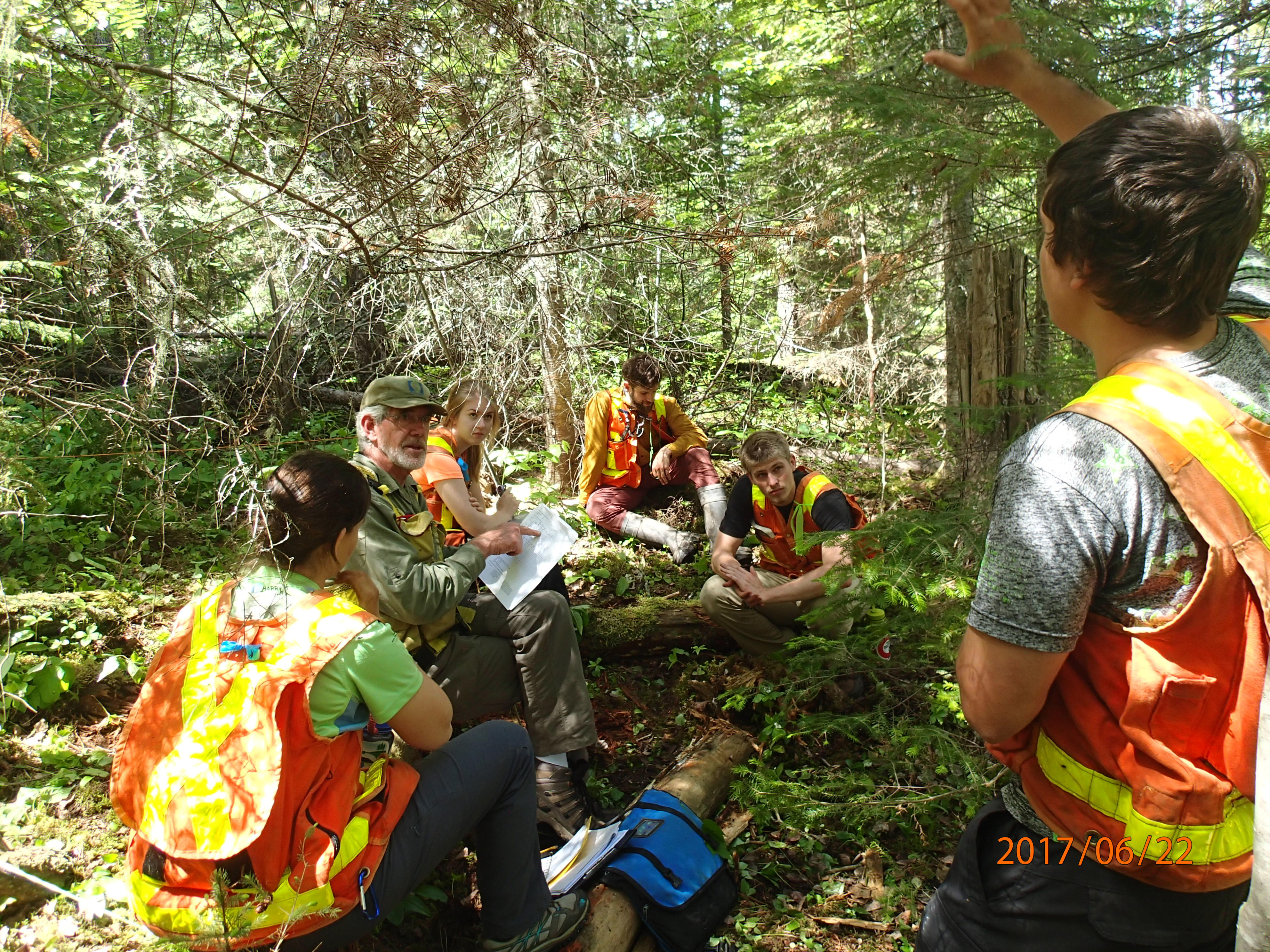 Quetico Foundation Student Summer Research Team familiarizes with vegetation monitoring, with Gerry Racey, before getting further insight into studies of wildfires and planned fire management on a summer-long wilderness canoe excursion. Learn about the work that the Student Summer Research Program does and learn more about the Quetico Foundation here: http://queticofoundation.org/what-we-do/programs/ Photo credit: Brian Jackson, Quetico Provincial Park Biologist