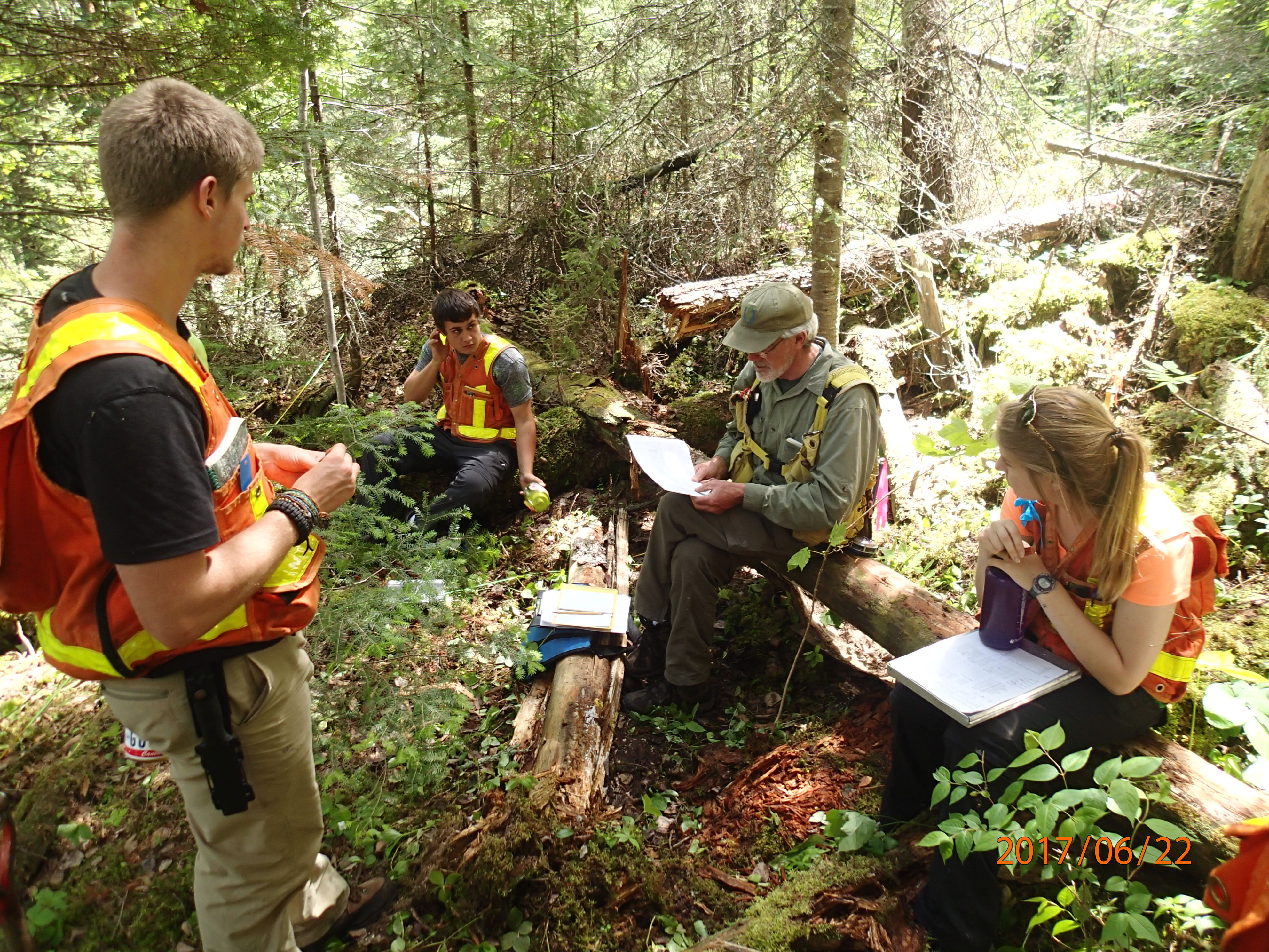 Quetico Foundation Student Summer Research Team familiarizes with vegetation monitoring, with Gerry Racey, before getting further insight into studies of wildfires and planned fire management on a summer-long wilderness canoe excursion. Learn about the work that the Student Summer Research Program does and learn more about the Quetico Foundation here: https://queticofoundation.org/what-we-do/programs/ Photo credit: Brian Jackson, Quetico Provincial Park Biologist